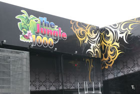 The Jungle 1000